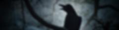 EDGAR ALLAN POE The Raven (C) grapestock