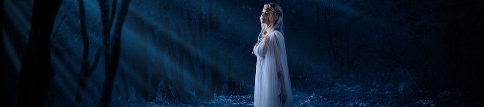EDGAR ALLAN POE Gothic Romance (C) rbv -