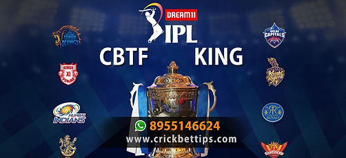 ipl 2020 cbtf king IPL bet tips.jpg