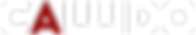 Callido Logo White.png