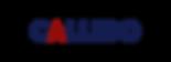 Callido Logo tbg.png