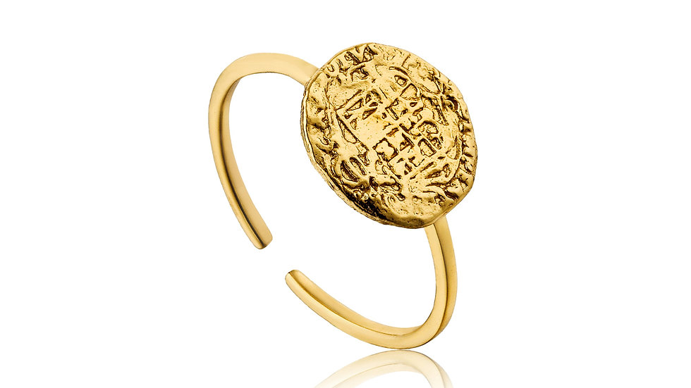 Gold Emblem Adjustable Ring - Ania Haie