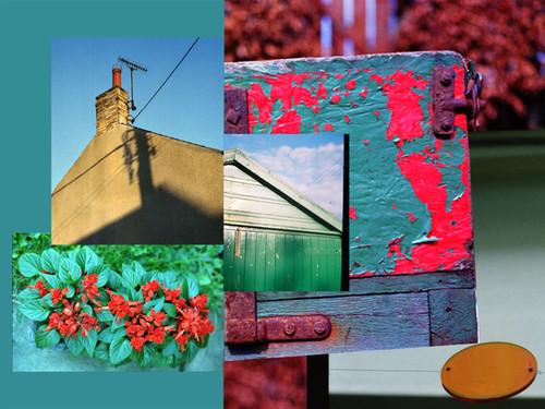 Red Flower web.jpg