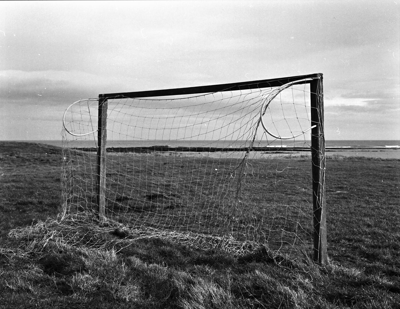 Netted Goal.jpg