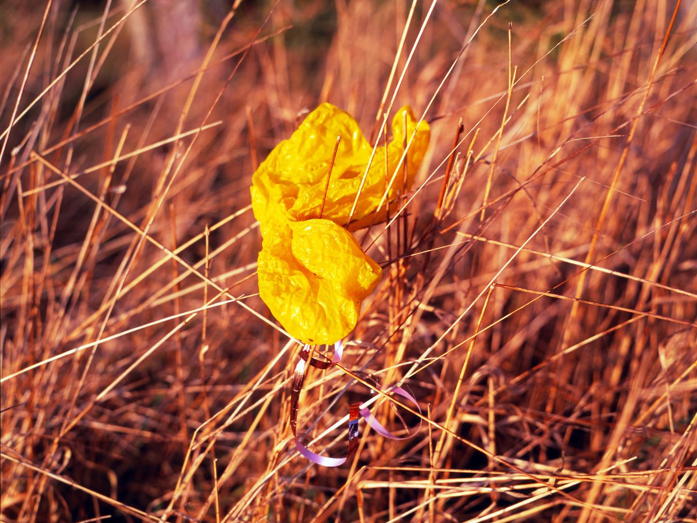 Yellow Balloon.jpg