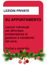 Lezioni private.png