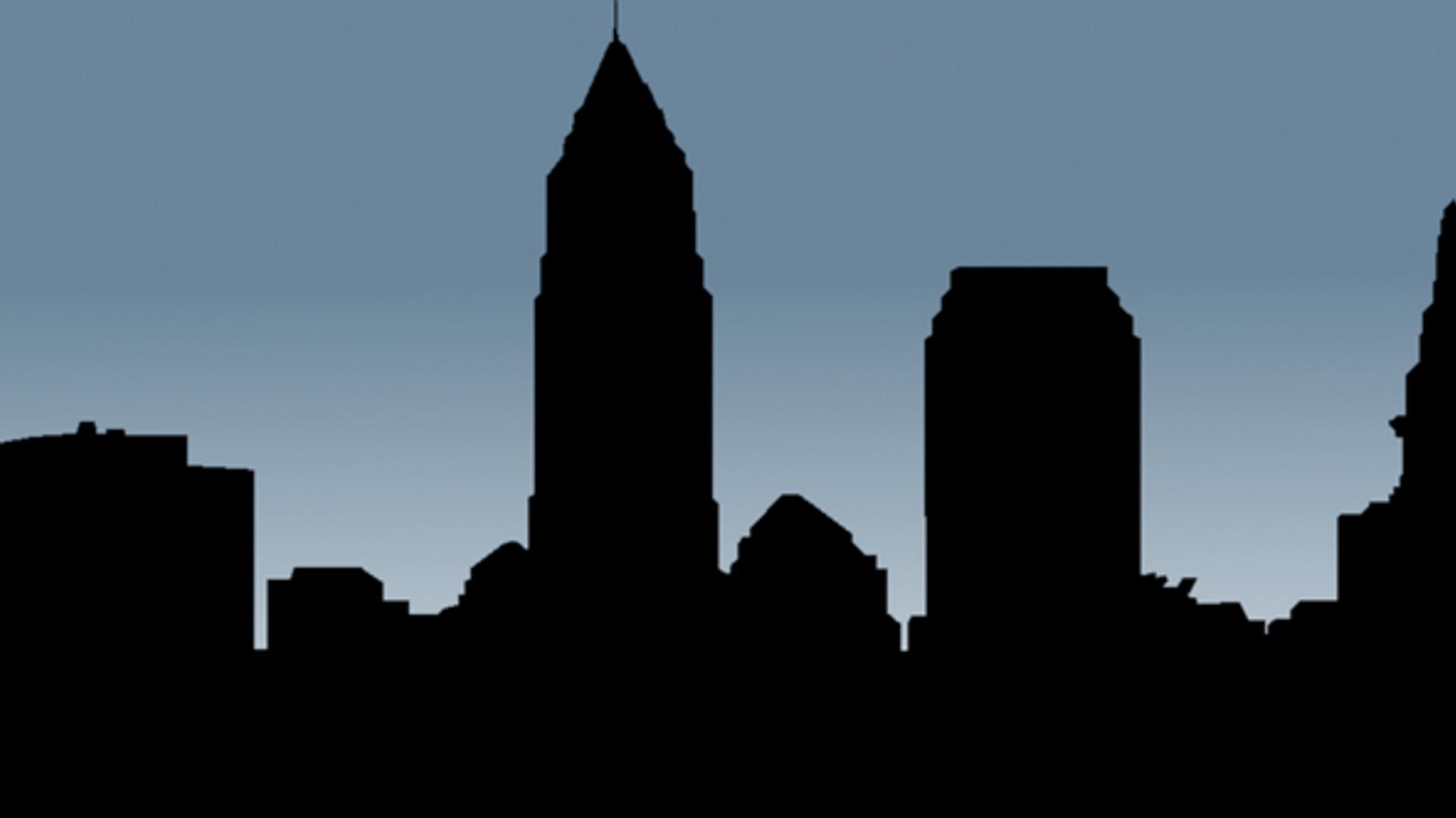 RIS Blue Banner skyline.jpg