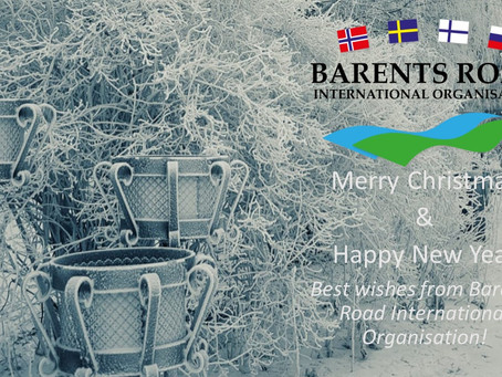 Merry Christmas & Happy New Year!