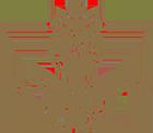logo_snak.png