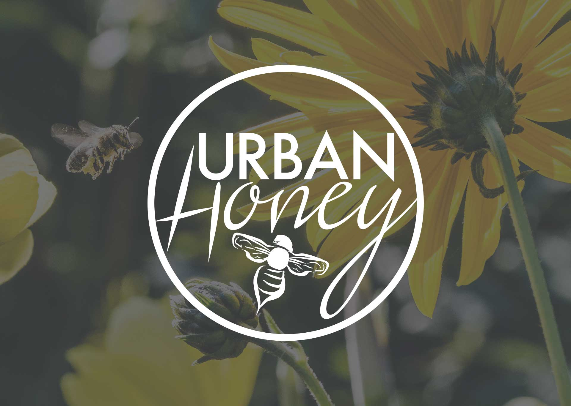 Urban Honey