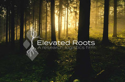 Elevated Roots