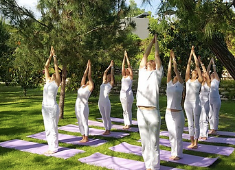 fest_Yogagroup.png