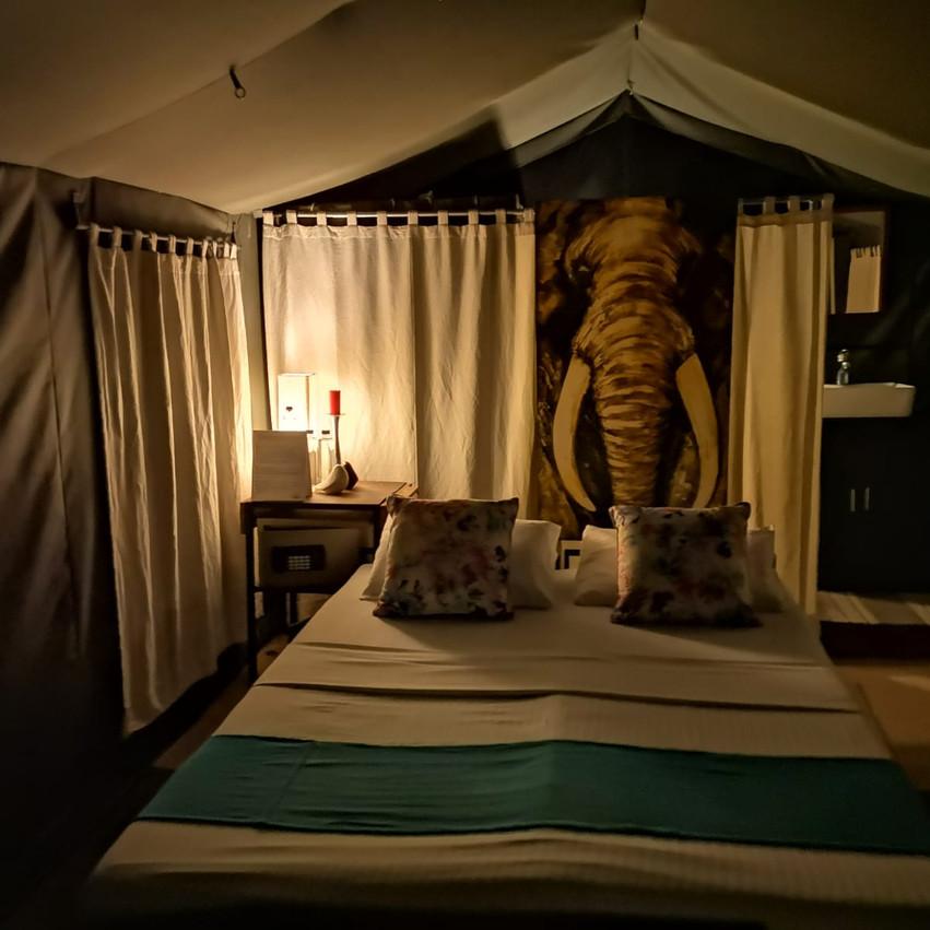 Tent home last night!