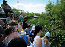 Alligator Farm in Florida (Credit: Jo-Anne McArthur / We Animals)