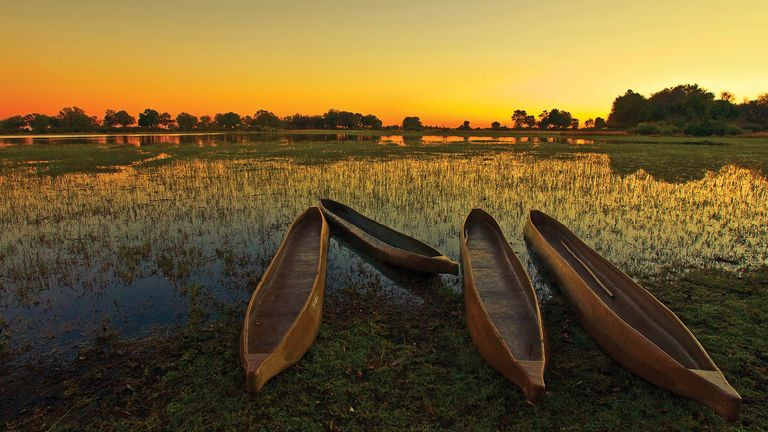 dug-out-canoes-in-the-okavango-delta-bot