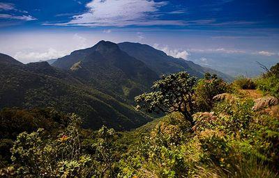 central-highlands-of-sri-lanka.jpg