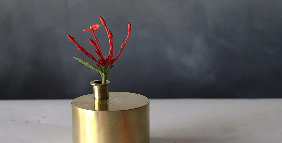 Brass Plant Holder #09