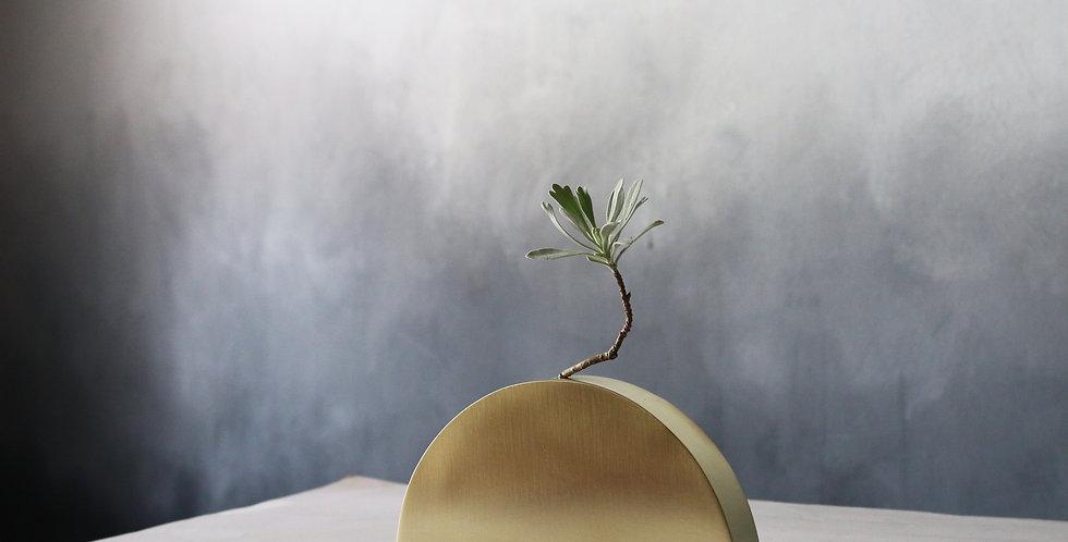 Brass Plant Holder #11S