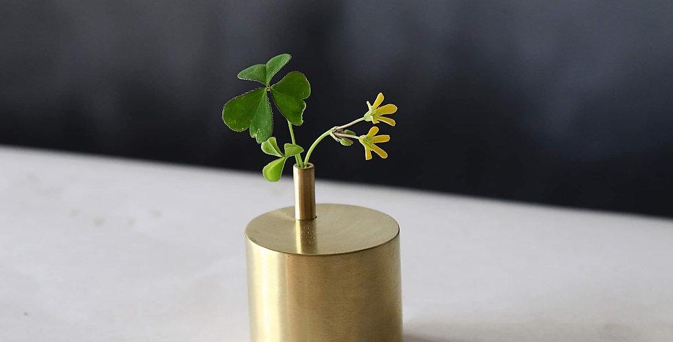 Brass Plant Holder #06B, 06M, 06S