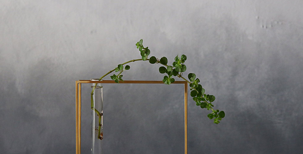 copy of Brass Plant Holder #04B