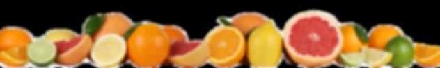 fruits-oranges-lemon-grapefruit-row-isol