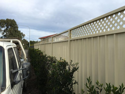 lattice insert colorbond fence