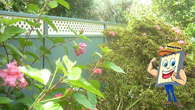 fencing.sydney lattice Colorbond Fence logo.png