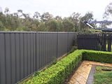 Colorbond Fencing Local