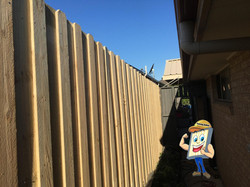 Lapped Timber Fence