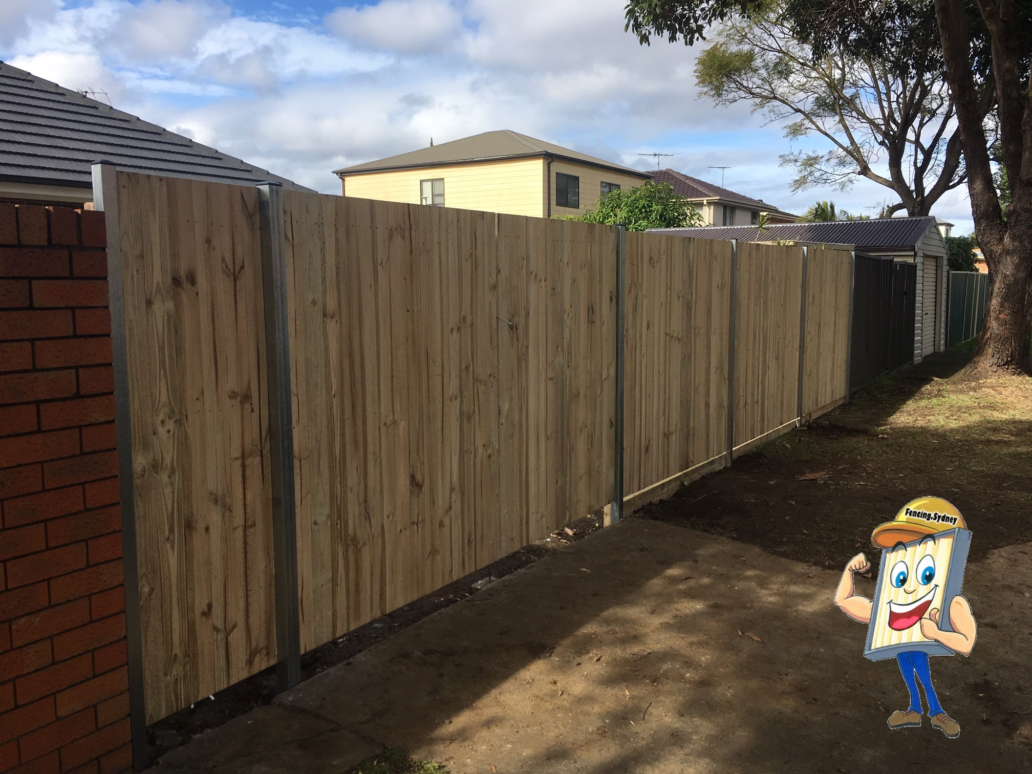 Single Paling Timber Fence