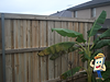 timber fence with logo 2.png