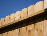 Single Paling Timber Fencing