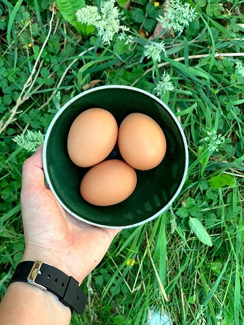 Chicken Eggs: One Dozen