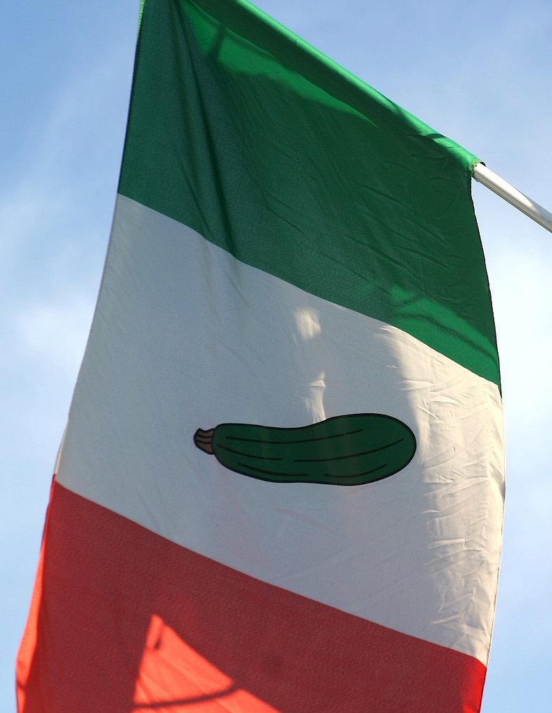ZFest flag 2013.JPG