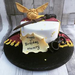 #harrypotter #harrypottercake #snitchcake #teamgryffindor #cake #birthdaycake #newcastlecakedecorato