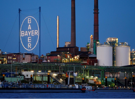 Bayer sees potential future business in plant-based meat market