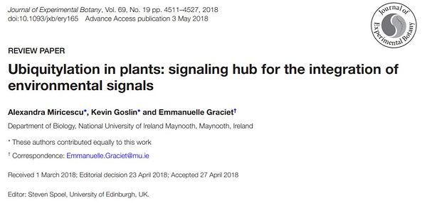 Ubiquitylation in plants.JPG