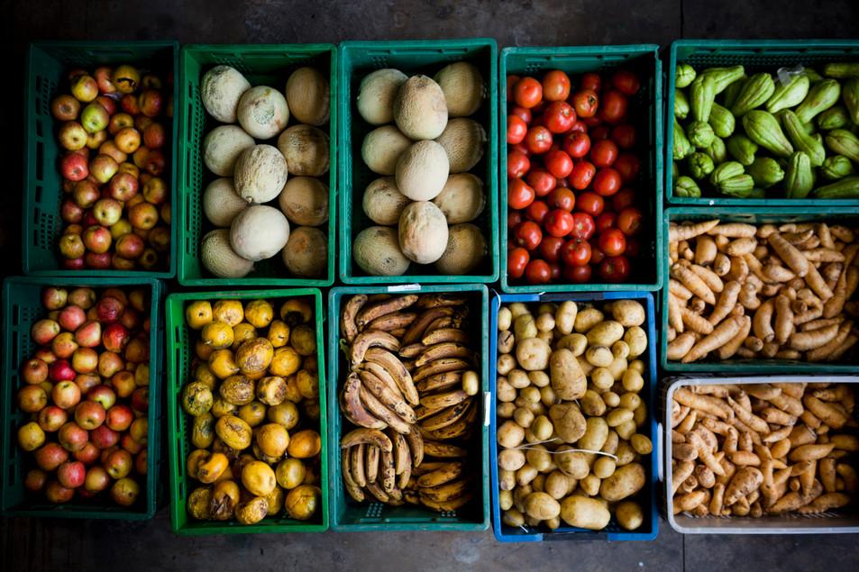 Alimentos_sem_valor_comercial__mas_própr