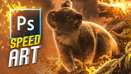 Koala's Downfall   Speed Art (photoshop)