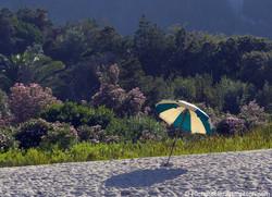 Shade on the Beach, Sardegna