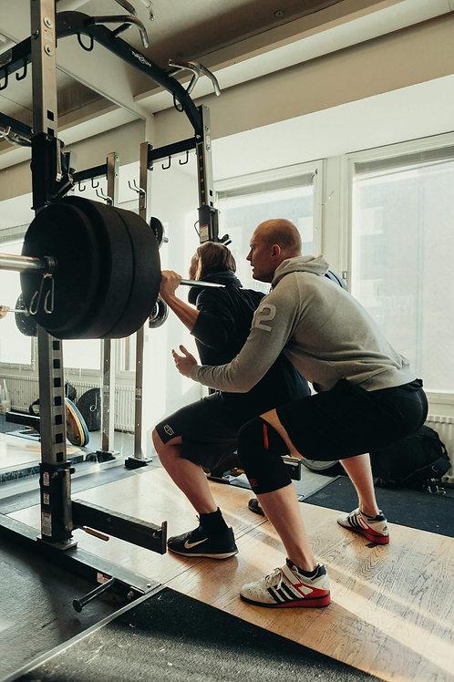 Training program - Maximal muscle gains
