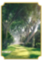 Park-Colonial-Botanic-Walk.png
