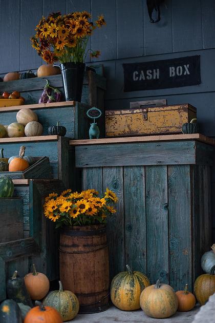 Honesty Box, gate sales, sunflowers, cash box, pumpkin, melon, squash