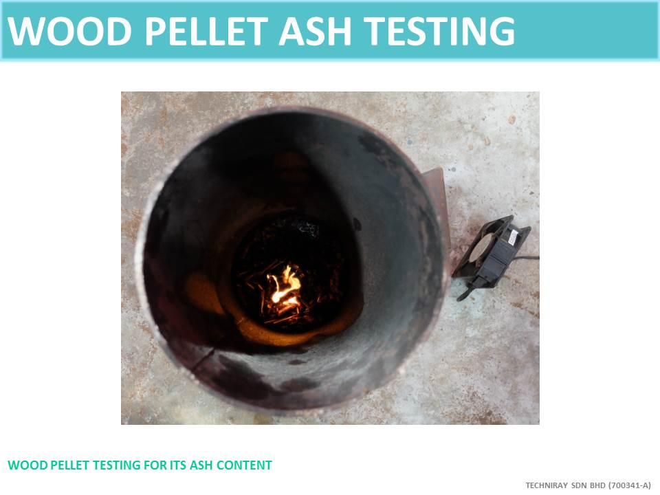 TECHNIRAY TESTING_ASH