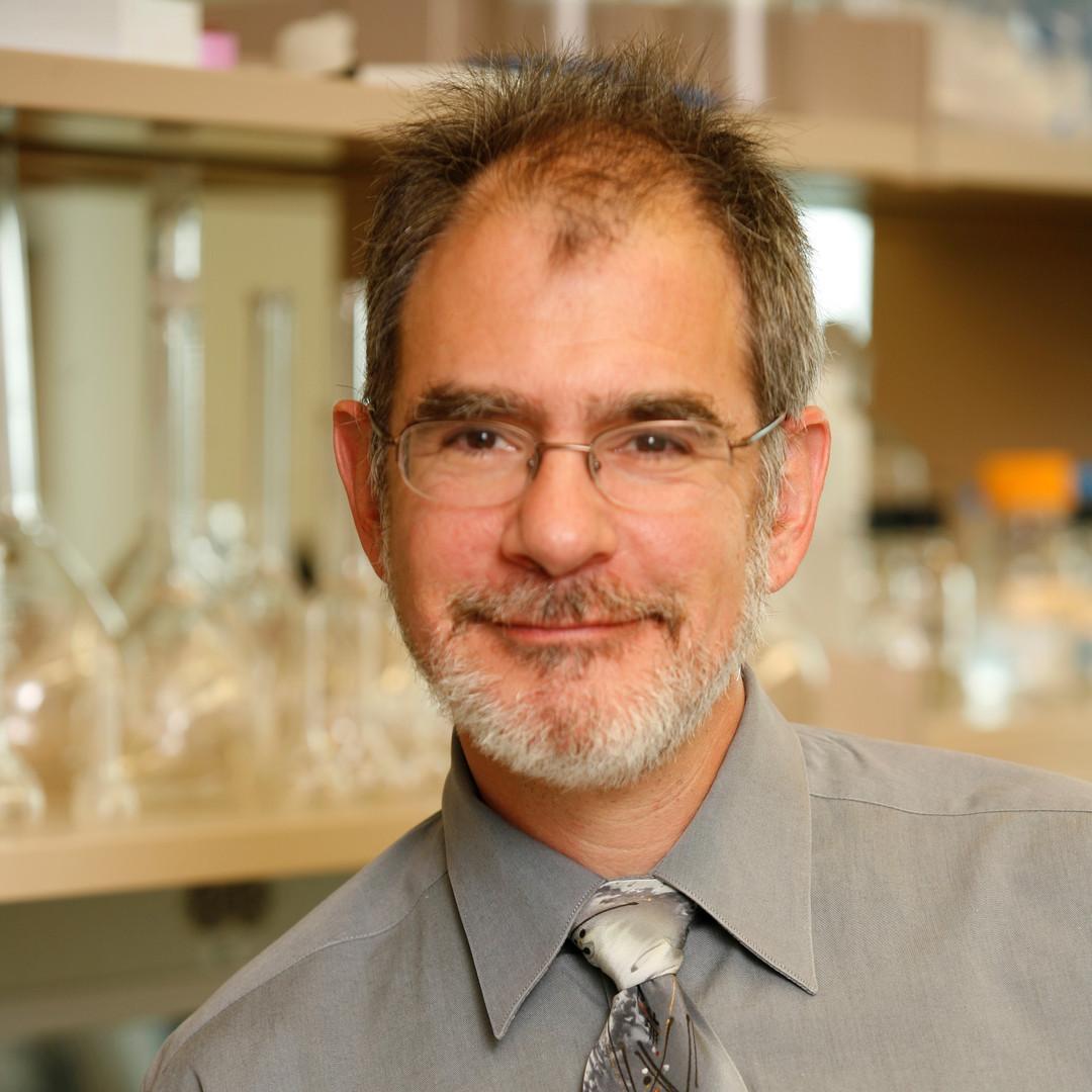 Robert Scheinman, PhD