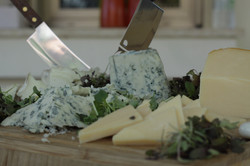 פלטת גבינות