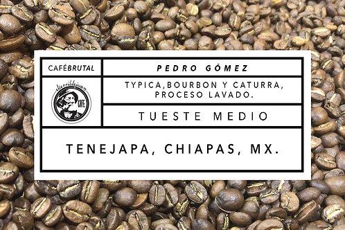CHIAPAS | PEDRO GÓMEZ