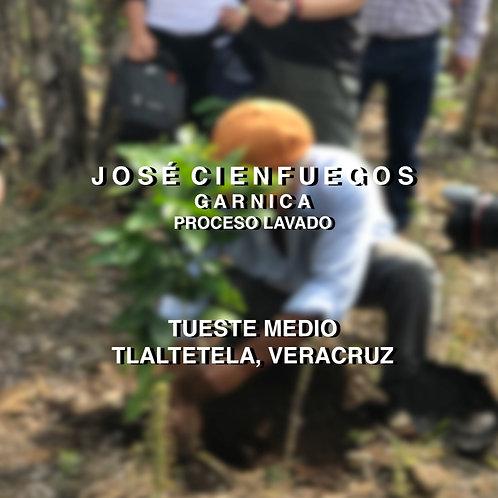 EL DE LA CASA (VERACRUZ) | JOSÉ CIENFUEGOS 500grs