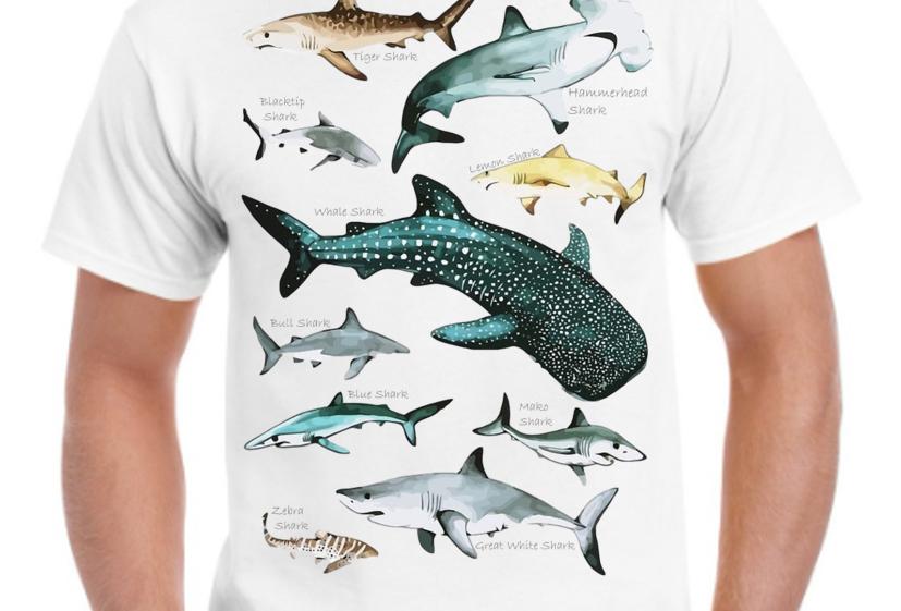 Playera- Conoce a los tiburones