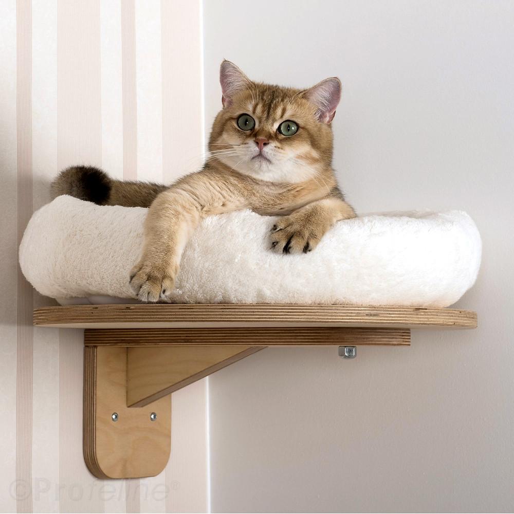 Wall cat shelve